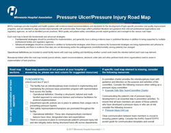 pressure injury/ulcer road map